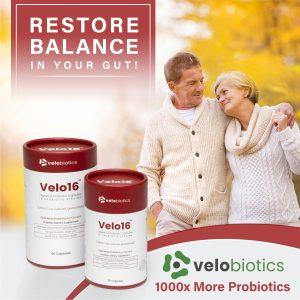 Velo16 – Probiotic Digestive Capsules